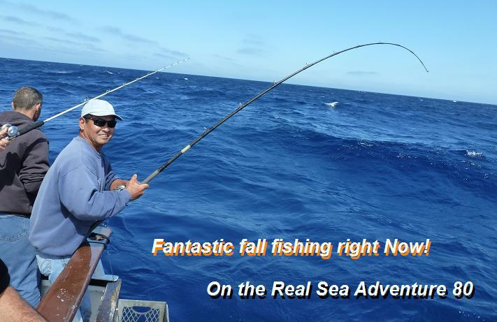 Deep sea fishing more with h m landing san diegan for Deep sea fishing san diego