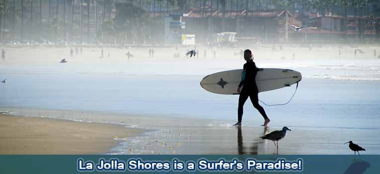 new-slideshow-surf
