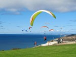 Torrey Pines Gliderport Is a La Jolla Attraction
