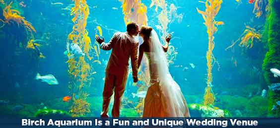 Birch Aquarium Is a Fun and Unique Wedding Venue