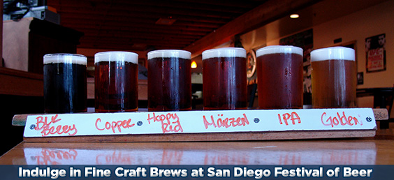 tours of San Diego Festival of Beer