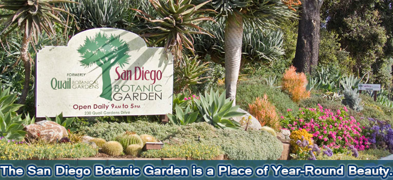 San Diego Botanic Garden Is North Countyu0027s World Renowned Botanical Garden  Attraction